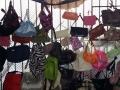 Bazar Castração Solidária
