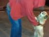 Cães do morador de rua Sr. José