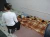 Mutirão de Castração - Junho 2013