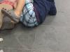 Mutirão de castração - Novembro 2013