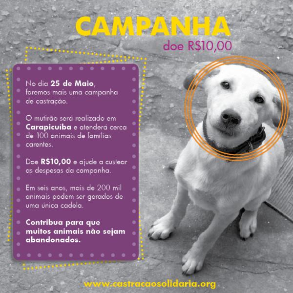 Campanha_doação