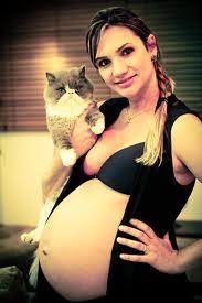grávida e gato
