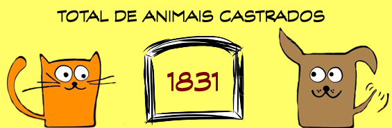1831 animais castrados