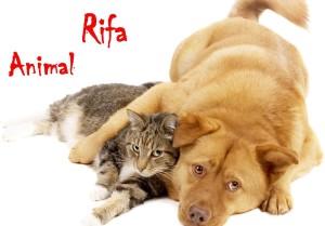 rifa2014