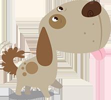 cachorro-cs