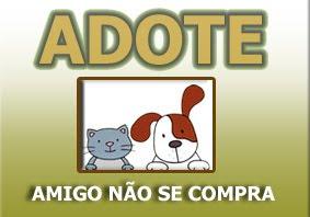 ADOTE_2